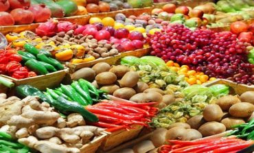 Morocco Exports EUR 462.3 million Worth of Fruits and Vegetables to Spain