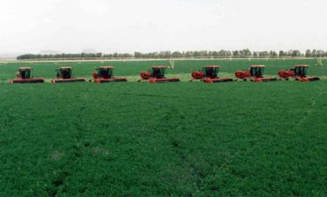 Tabuk Agriculture eyes SAR 60m acquisition