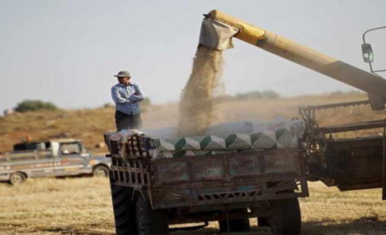 Syria to import 1.5mln tonnes wheat - minister
