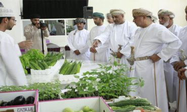 ODB's Musannah branch funds 536 farm, fisheries projects