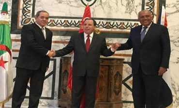 Egypt, Tunisia, Algeria call for 'unconditional ceasefire' in Libya: Statement
