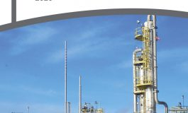 South Africa: Oil, Gas & Petrochemicals 2020