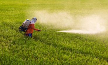 Polyserve Fertilizers completes Ferchem Misr's acquisition