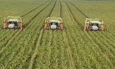 Tabuk Agricultural to replace 2 projects